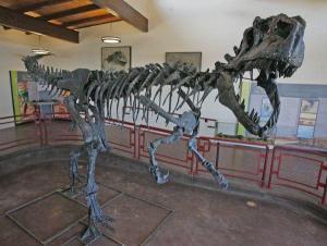 Cleveland Lloyd Dinosaur Quarry